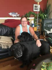 Myself with my sister's and nephew's beautiful black Labradors, which just happen to be brothers from the same litter.  Just love spending time with them