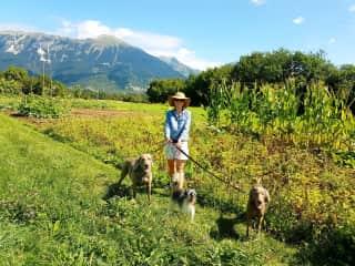 Niomi in Slovenia with Pika, Aron and Brego