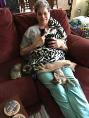Judy starting the morning with a cuddle. Heaven! We don't have pets now, but enjoying this time with daughter-in-law's foster kitties.
