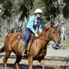Sue riding Gypsy at a Stockman's Challenge competition