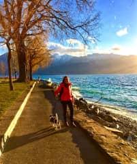 A walk with Bean at lake Geneva