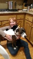 Cooper - my daughter  Paulina's family  dog.