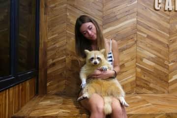 Hugging my raccoon in Thailand