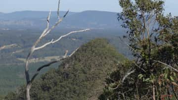 Hiking the Sunshine coast hinterland
