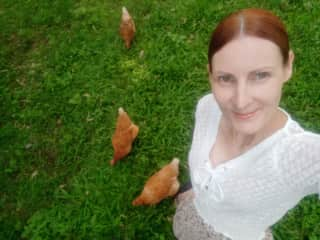 Chickens x 5 _Pet/house sit Beenleigh QLD Feb 2021