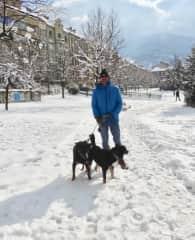Graham, Moose and Matti - Sarajevo pet sit 2018/2019