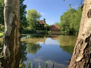 The pond, towards the house