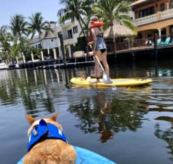 Barb and pup SUP in Fort Lauderdale Florida canals