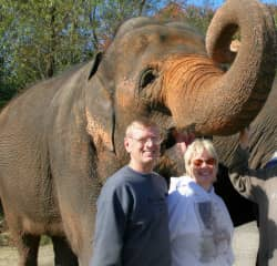 Helping at an elephant refuge. These majestic animals would have been put down if the refuge hadn't taken them in.