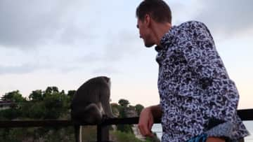 Marius with a Monkey that randomly appeared on the Balcony of a Restaurant where we Dined