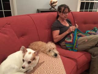 I also like to knit and crochet.