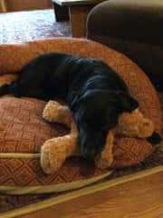 libby and her stuffy