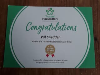 Recent certificate from TrustedHousesitters. Nice surprise.