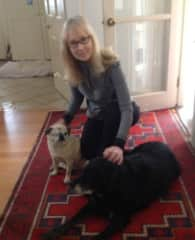 Windy with Elderly Lab and 1-eyed Pug - Please see other photos, too!