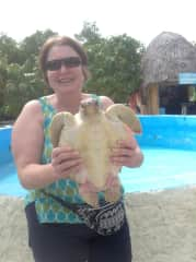 Visiting a turtle sanctuary in Mexico.