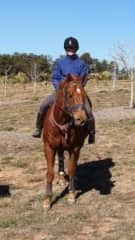 My Horse Carlo, I've been a horse rider since a childhood