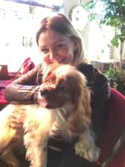 in Shanghai Dogsitting