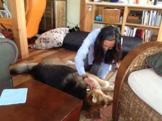 Lumi and lovely Maia at our house sit in Port Townsend