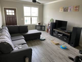 Living room (includes Netflix, Hulu, HBOGo, DVD player, record player)
