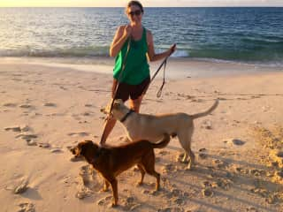 Me with Barley and Jackson, our latest pet sitting assignment in the Bahamas.