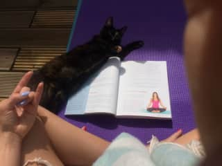 Reading Yoga lecture