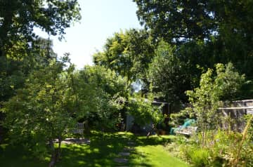 The garden from the house