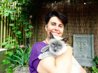 Bella, our rescue cat