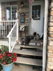 Maggie and Zuki on the front step.