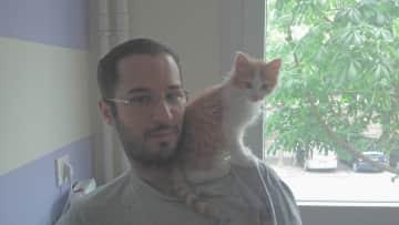 Adam with tiny Gluino
