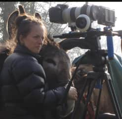 Never underestimate the keen framing abilities of a donkey.