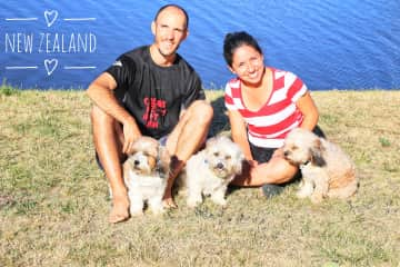 Our first house sitting in Papamoa Beach, New Zealand.