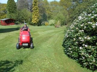 Gardening in Northumberland