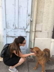 Petsitting in France