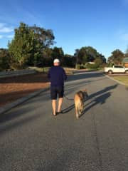 Michael and Picasso on their early morning walk in Australia