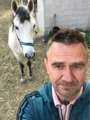 Taking care of 2 dogs, 2 horses and 30 chickens in Spain