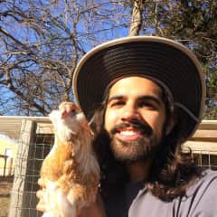 Cayce and our chicken, Yosemite. We rehomed our chickens to a loving family when we decided to leave Austin and travel full-time (January 2019).