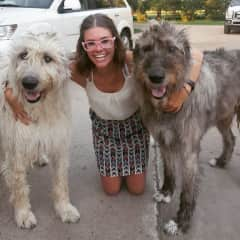 Me and Moose and Madi. Irish Wolfhounds (My babies!)