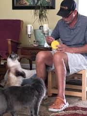 Leo with the kitties