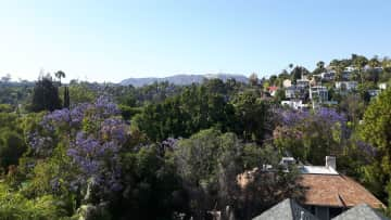 Just to give you an idea of the neighborhood, this was taken from my roof. You can see the Hollywood sign over there on the mountain, and the whole area is very lush and green.