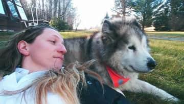 Suka, former dog housemate, Vermont, USA