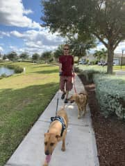 Apollo beach with Emma & Duke with Trustedhousesitters