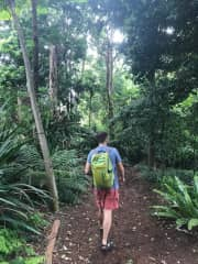 Tom hiking in the botanical gardens in Sydney, Australia