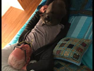 Adorable Misty was all over Mark only a couple of hours after we arrived at this wonderful house sit in the Pyrenees, Nov. 2019