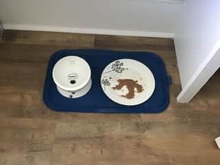 He has a mat with water bowl and canned food plate