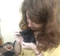 We took care of kittens in India!