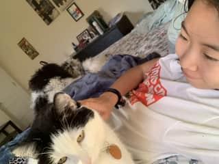 Buddha the cat!