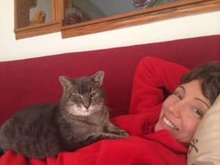 My zen cat, Olivia.