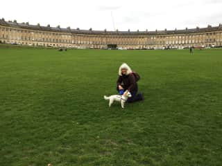 Lovely Teddy, Jack Russell Terrier from Bristol, visiting Bath