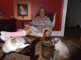Me with Ariel and Luna, ragdoll cats