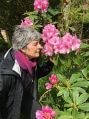 Wendy - likes flowers, photography , hiking, kayaking